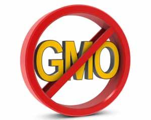 No-GMO